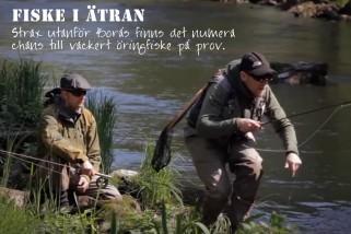 Fiske i Hillared